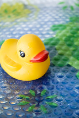 duck toy for baby bath