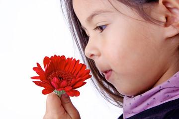 enfant qui sent le parfum d'une fleur rouge