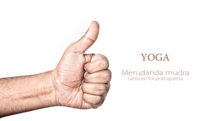 Yoga merudanda mudra