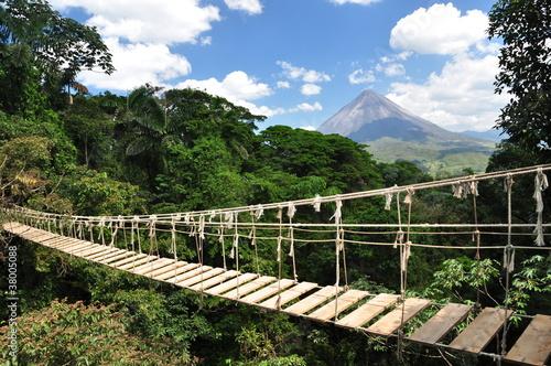 Fotobehang Centraal-Amerika Landen Brücke im Dschungel