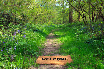 Welcome to the spring woodland horizontal