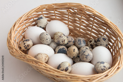 egg basket