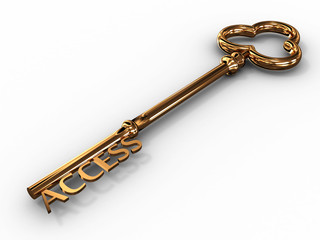 Gold access key on white background. 3D image