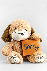 Sorry message and toy