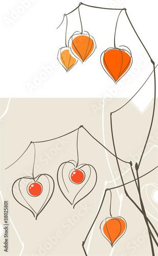 Physalis (chinese lantern) hearts © Victoria Kalinina