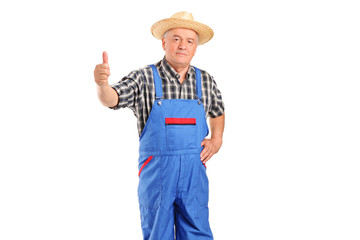 Mature smiling farmer giving a thumb up