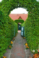 arch of topiary