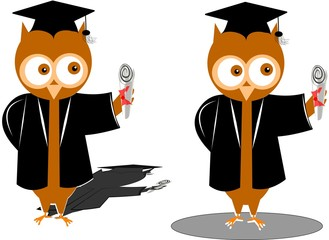 wise old owls graduating