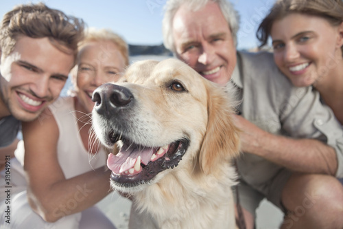 Close up of parents and adult children with dog on beach