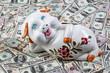 Dollar Banknoten und Sparschwein