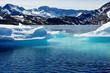 Iceberg - 38065207