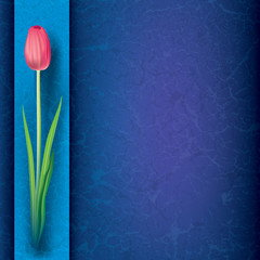 abstract grunge floral background with red tulip