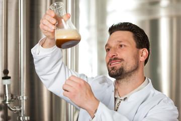 Braumeister für Bier in seiner Brauerei