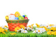 basket with easter eggs on a meadow