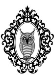 owl in antique picture frame, vector