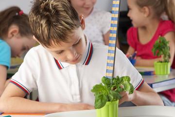 Boy learning about plants in school class
