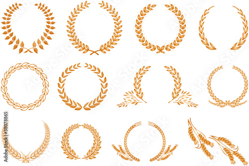 Laurel wreath pattern isolated on white - 38078865