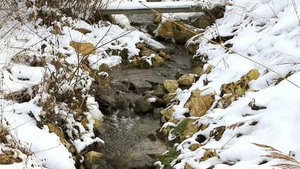 Fluss Winter / Full HD VIDEO