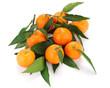Clementine con foglie