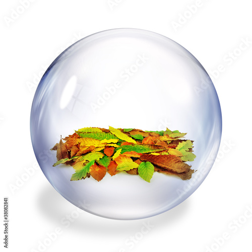 leaves in bubble
