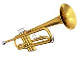 Brass trumpet on white background