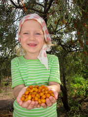 The child with sea-buckthorn berries in hands