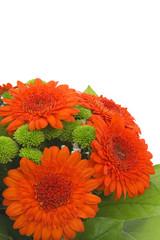 Bouquet gerbera.