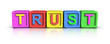 Play Blocks : TRUST