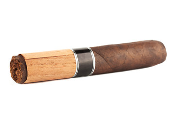 Cigar on the white