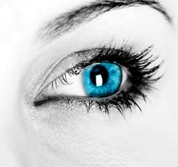 oeil de femme