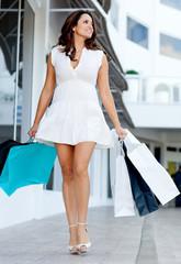 Gorgeous shopping woman