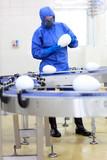 scientist at conveyor belt in gmo factory poster