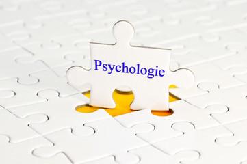 Psychologie Puzzle Schriftzug