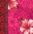 Hibiscus   wallpaper
