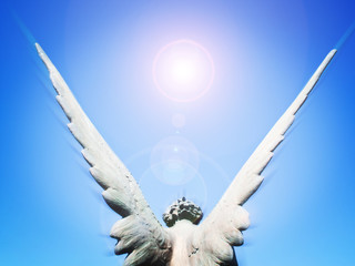 angel wings and sun light