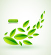 Green vector leaves