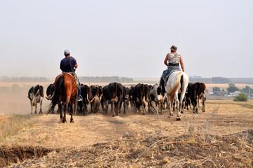 East Cowboys
