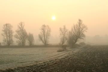 Rural landscape in the foggy November morning