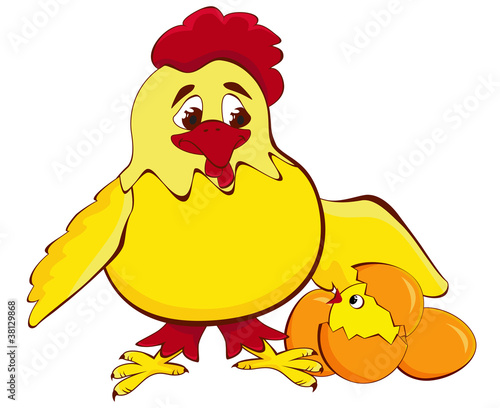 chicken mother with baby egg