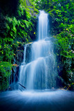 Fototapety Beautiful Lush Waterfall