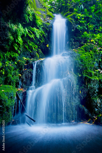 Fotobehang Watervallen Beautiful Lush Waterfall