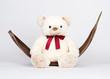 Teddybär in Kokosblatt