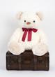 Teddybär mit Koffer