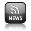 NEWS Web Button (headlines rss feed breaking internet media)