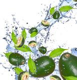 Fresh avocado in water splash,isolated on white background