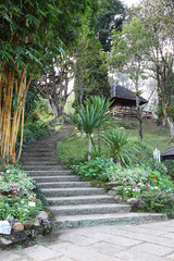 Staircase from garden to house.