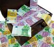 Truhe mit Euro Banknoten. Finanzkrise,