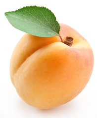 Apricot with leaf on a white background.