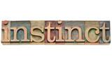 instinct word in letterpress type poster