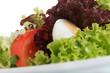 Bunter Salat mit Ei und Tomate